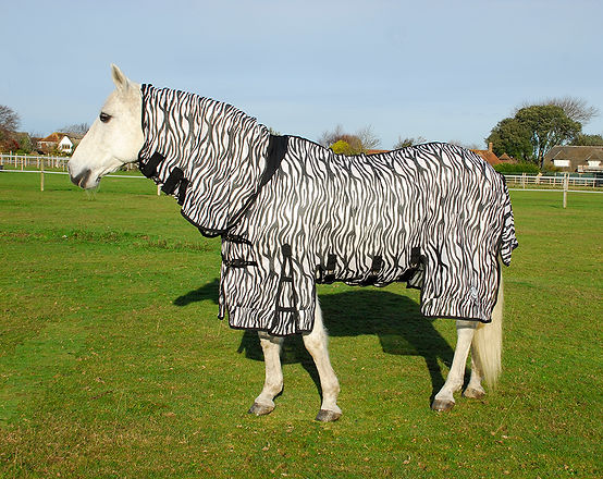 Rhinegold Elite Savanna Fly Rug - Zebra