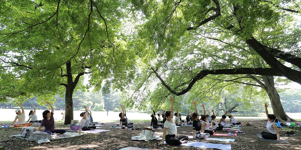 第2回 駒沢公園でパークヨガ