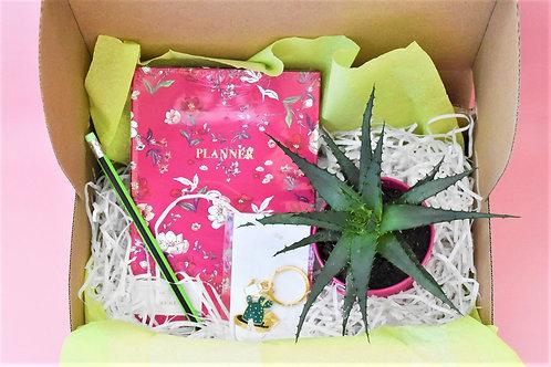 Подаръчна кутия Cactus Love