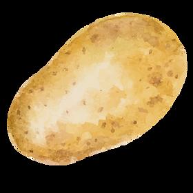 Large Potato