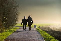 walk-the-walk-detox-program.jpg