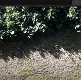 Screenshot 2021-06-04 at 13.09.53.png