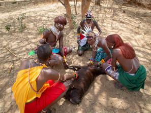 Kenya's Lion Warriors