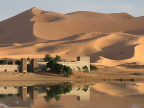 Morocco in Focus