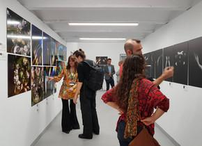 6th Biennial of Fine Art & Documentary Photography