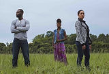VARIETY: TV News Roundup - Queen Sugar added new cast members and directors