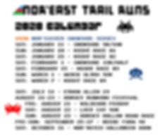 NETR 2020 calendar - futuristic.2.png