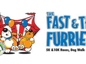 The Fast & The Furriest Walk & Run Downtown Saturday