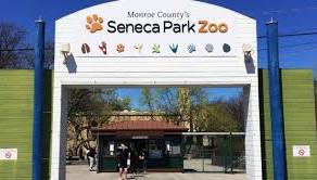 Seneca Park Zoo closed due to the coronavirus
