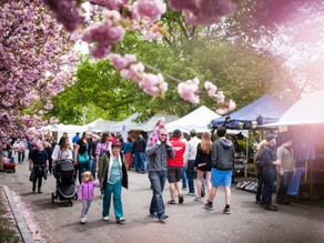 Rochester Lilac Festival canceled due to coronavirus outbreak
