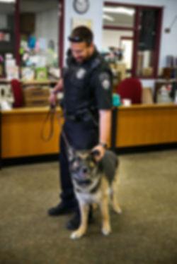 Canine Police K-9 Grants