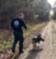 Office Boone K9 Unit Tracking