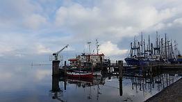 Terschelling vissersboten op acryl 105 x