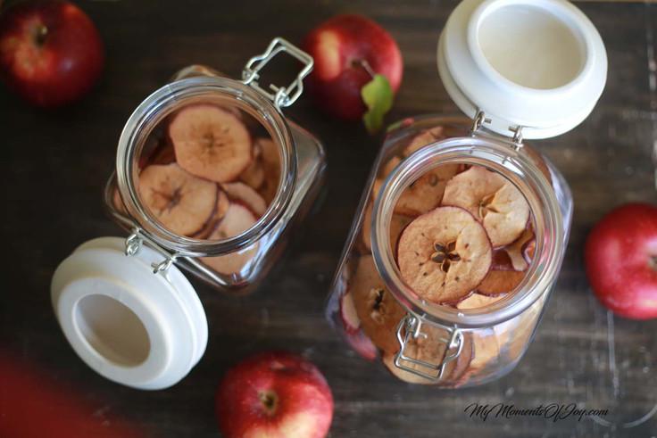 Apple Picking & Homemade Apple Chips