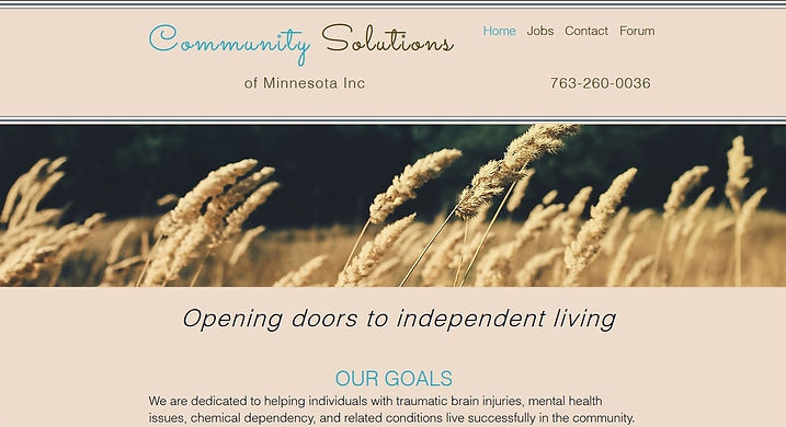 Sample webpage for Community Solutions of Minnesota