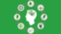 producao-sustentavel-blog.png