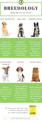 Dog Trainer | Fun