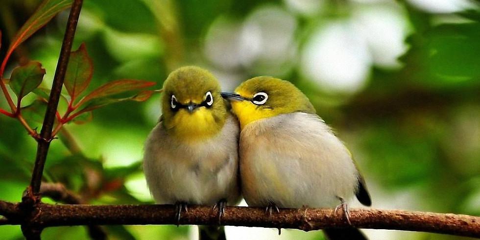 j'aime et je suis aimé(e) ouverts à tous seul(e) ou en couple