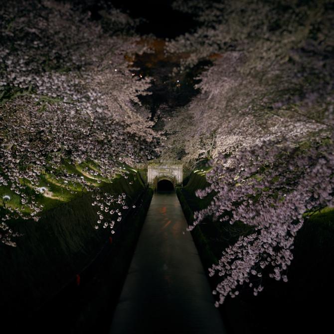 琵琶湖疎水 三井寺第一トンネル