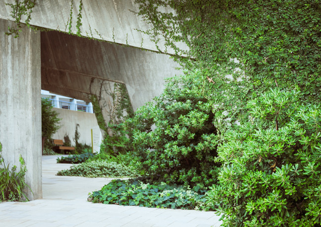 מקס קובלסקי - צילום מלונות ואתרי נופש