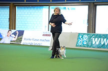 animalhappydays_simbasco_Dogdance.jpg