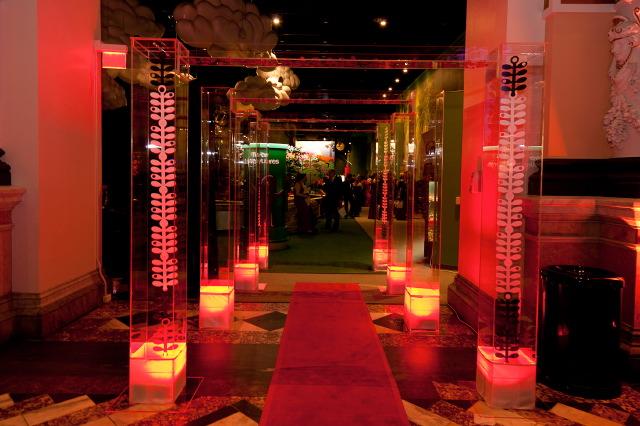 Lucite-walkway-acrylic-plexiglass-archway