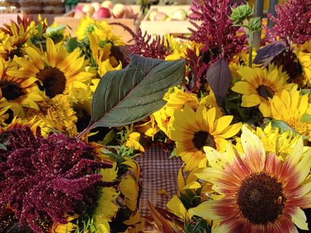 September 25 Market Day