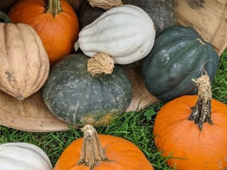 Market Day October 2, 2021