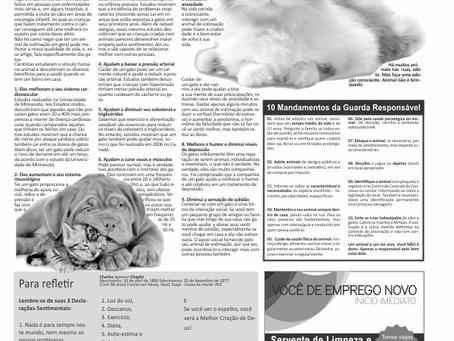 Jornal InformaSul | Diagramação