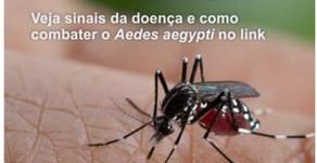 CASSI alerta: cuidados básicos evitam doenças causadas pelo mosquito