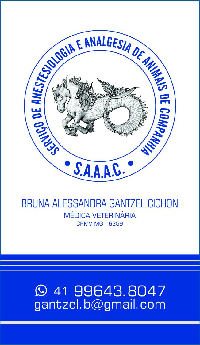 BRUNA ANESTESIO | logo e cartão