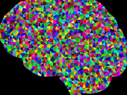 Brain fingerprints