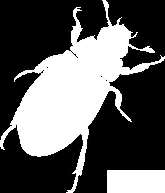 big-bug-left.png