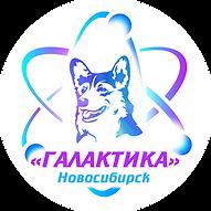 Логотип Галактика круг.png