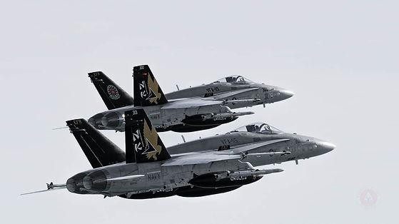 eagles 4.jpg
