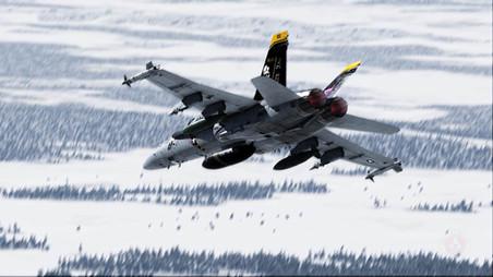 eagles jet 2.jpg