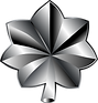 1200px-US-O5_insignia.svg.png