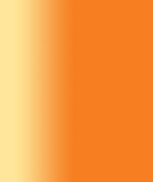 orange background copy.jpg