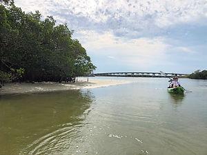 skinny water low tide kayak tour