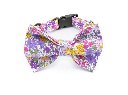Flowers Bow Tie Collar