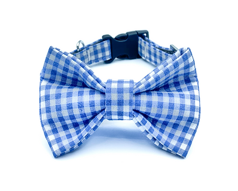 Blue Gingham Bow Tie Collar