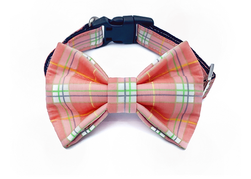 Pink Pastel Check Bow Tie Collar