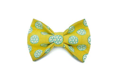 Lemons Bow Tie