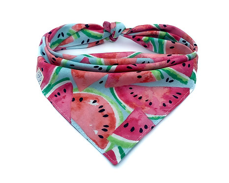 Watermelon Bandana - Blue