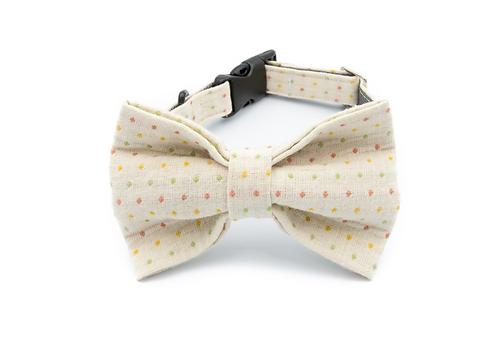 Fun Beige Bow Tie Collar