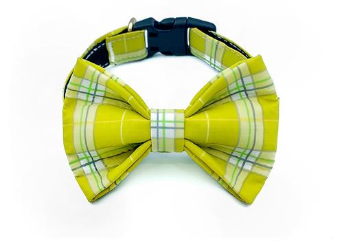 Yellow Pastel Check Bow Tie Collar