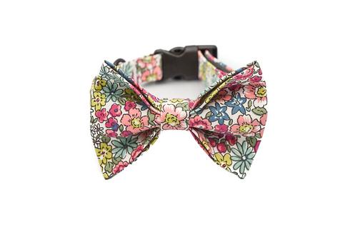 Spring Bow Tie Collar