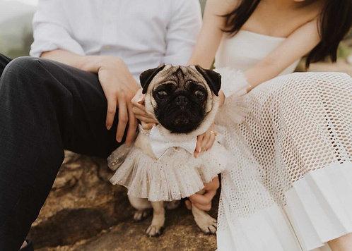 Wedding Tutu / Collar