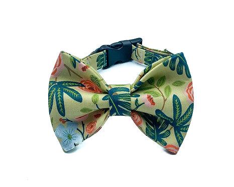 Olive Garden Bow Tie Collar