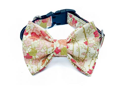 Blossom Bow Tie Collar